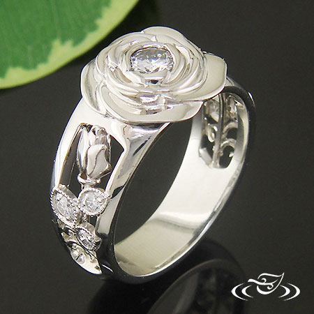 Ring Around Greenlake